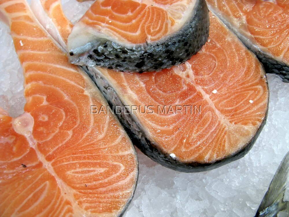Delicious fresh salmon by BANDERUS MARTIN