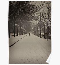 Snowy Ottawa - B/W - Ottawa, Ontario Poster