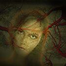 The Vision by Igor Zenin