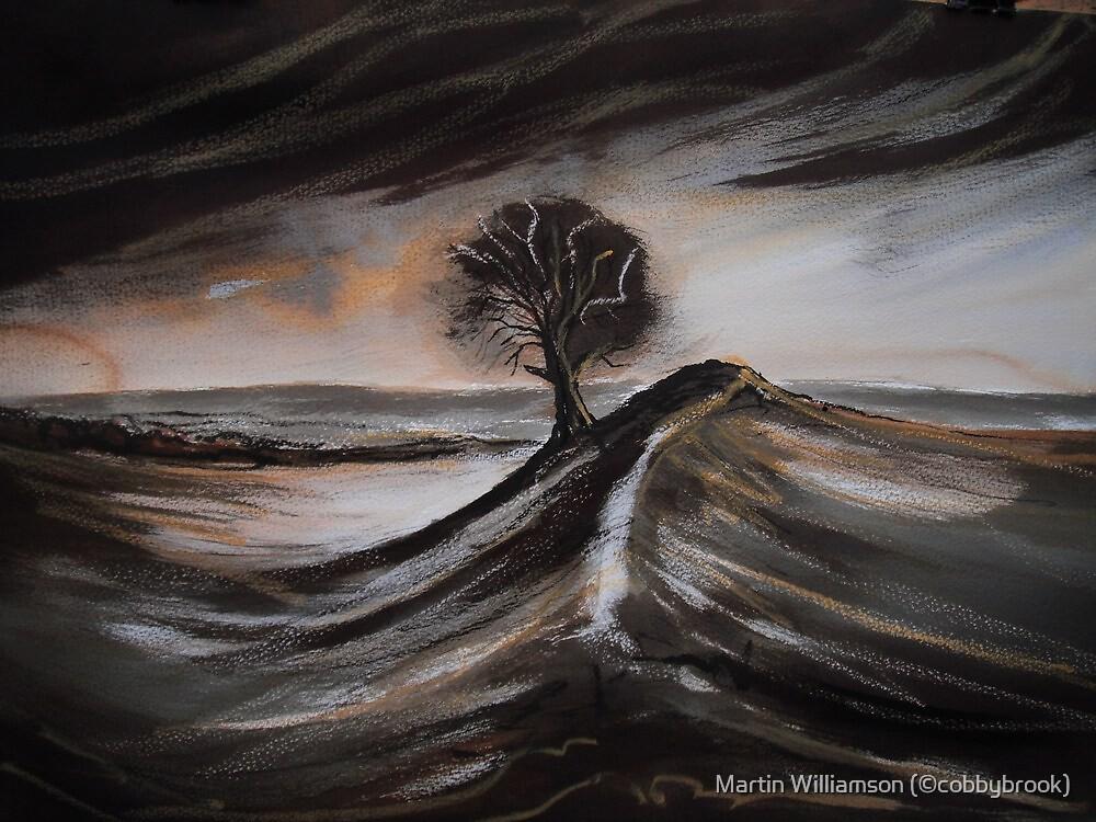 'Burrough Hill' by Martin Williamson (©cobbybrook)