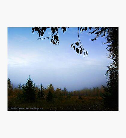 My October (Great Northern Flats, Montana, USA) Photographic Print