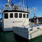 NYBAKK SF-7-NV by NordicBlackbird
