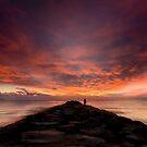 Watching the sky burn by Ralph Goldsmith
