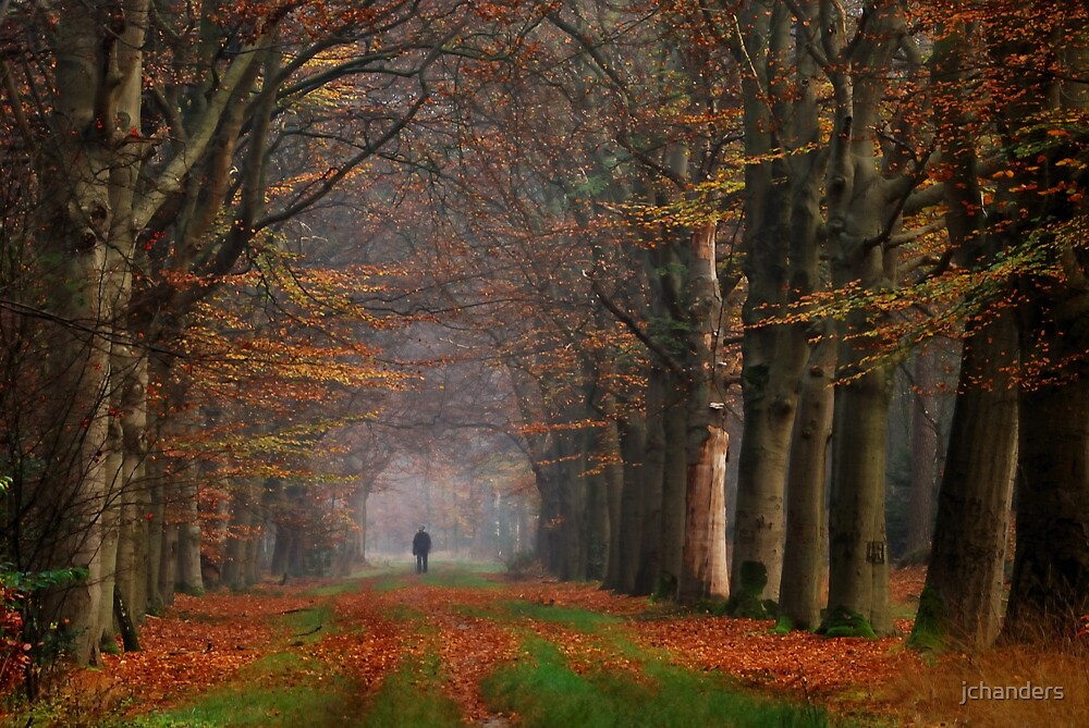 A lonely walker came my way by jchanders
