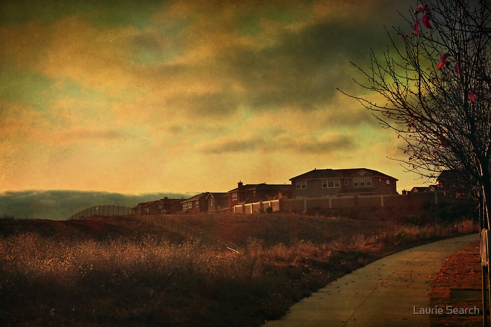 Walking Alone by Laurie Search