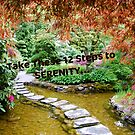 12 Steps to Serenity... by Carol Clifford