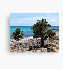 Plaza's Island Canvas Print