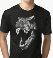I'm a Dino Fan... Tri-blend T-Shirt