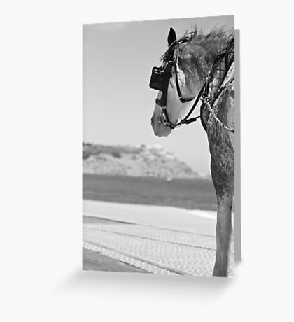 Time to enjoy the view Greeting Card