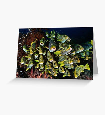 Yellow Ribbon Sweetlips Greeting Card