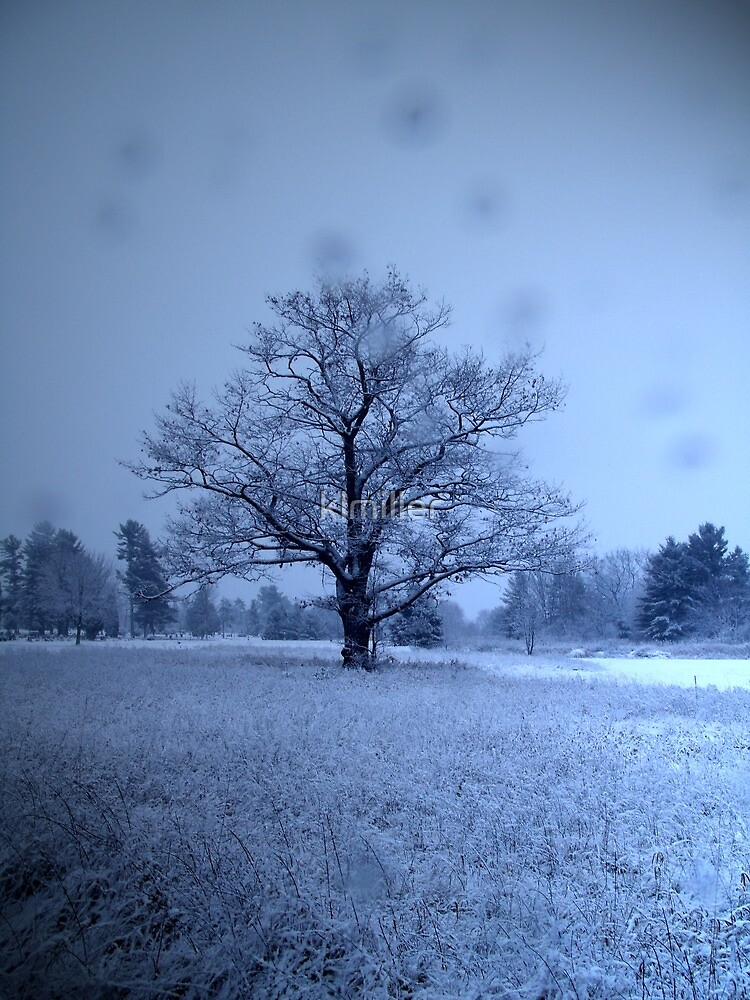 In Snowy Seclusion by klmiller
