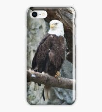 Lone Eagle iPhone Case/Skin