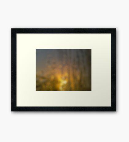 Condensate Bokeh Framed Print