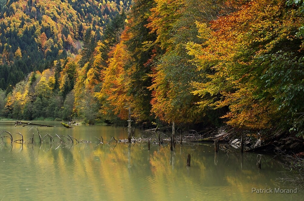 Autumn around the lake by Patrick Morand
