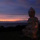 Zen by PJS15204