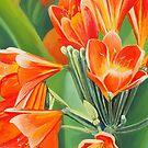 Orange Flowers von Graeme  Stevenson