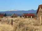 Whitney - Ghost Town of the Blue Mountains by Betty  Town Duncan