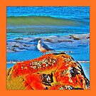 HAWLEY SEAGULL by Rose Frankcombe