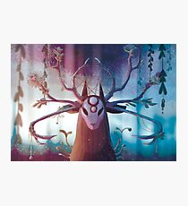 Alpha Stag Photographic Print