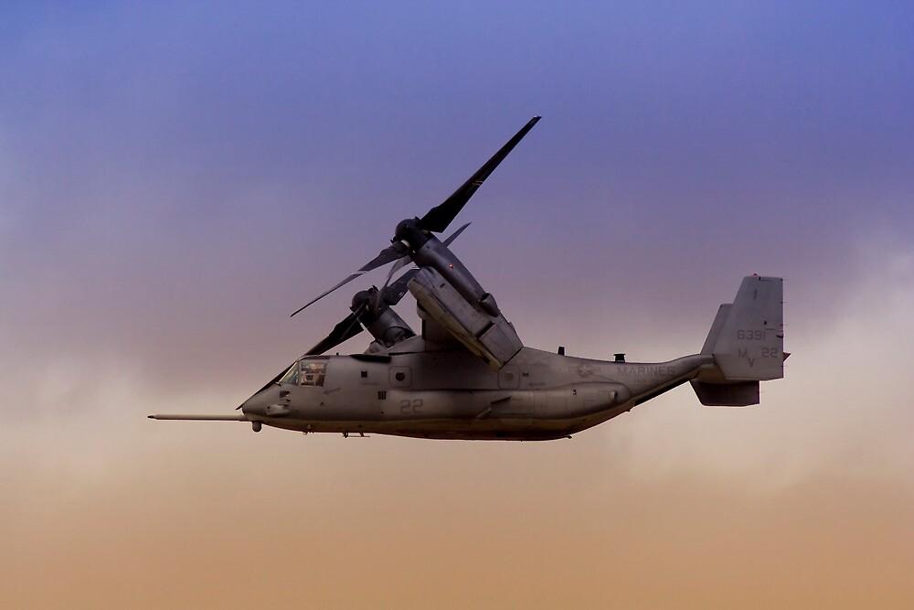 Osprey In Flight Series 3 of 4. by RickyBarnard