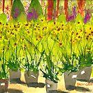 """Gray Barn Nursery"" by Sally Griffin"