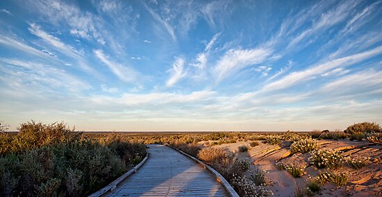 Walk Back in Time - Mungo NP, NSW by Malcolm Katon