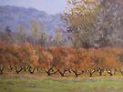 Autumn Orchard by Karen Ilari