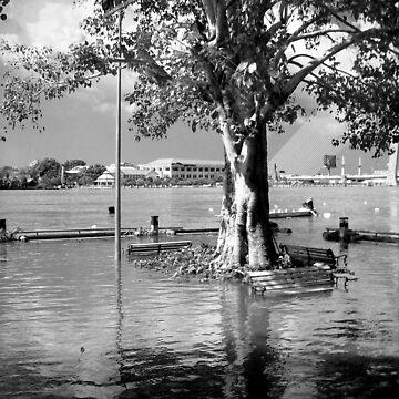 Thai Floods by Phoonaz