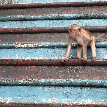Batu Monkey 2 by Phoonaz