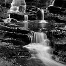 Rick's Hidden Falls by Debra Fedchin