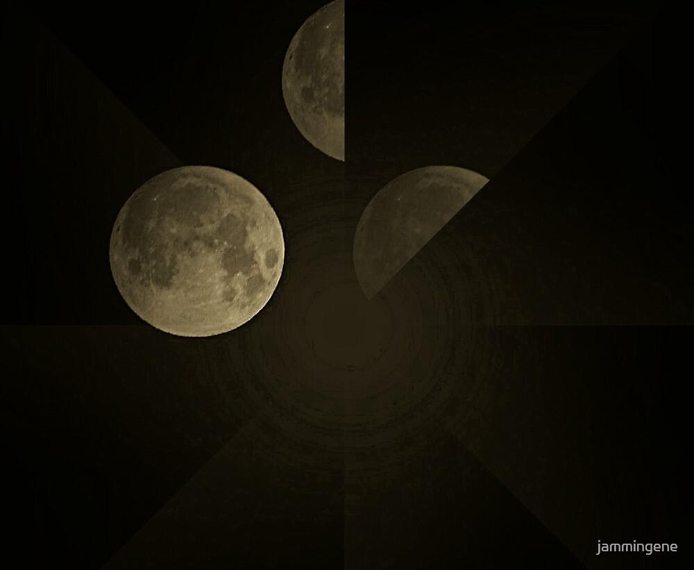 November Full Moon  by jammingene