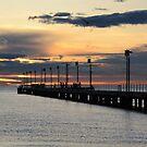 Sunset  by suzichendesign