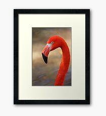 Flamingo Profile Framed Print