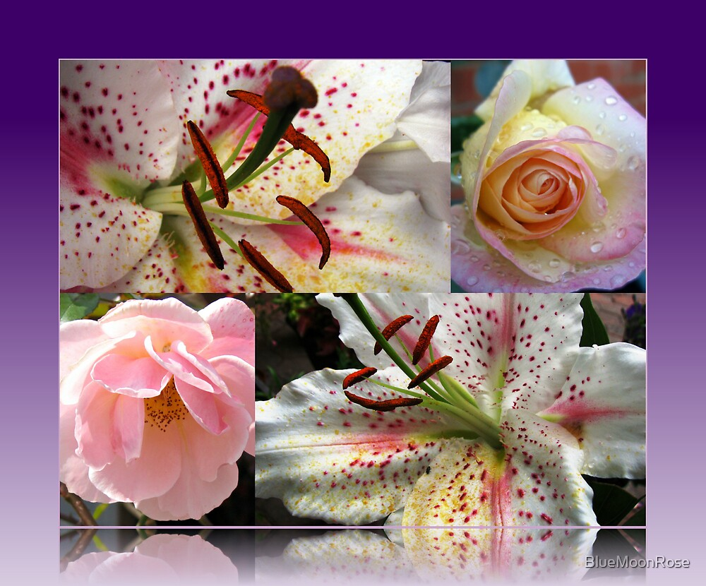 Roses and Lilies Collage in Reflection Frame von BlueMoonRose