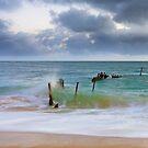 S.S. Dicky - Caloundra Qld Australia by Beth  Wode