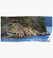 Sandstone Point on Georgeson Island  Poster