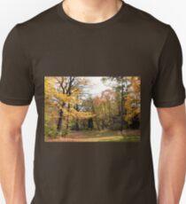 Path into the Ravine T-Shirt