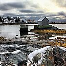 Winter at Blue Rocks by Amanda White
