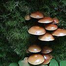 Mushrooms In Mora by kimmers64