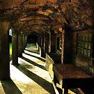Arches # 1 by Debra Fedchin