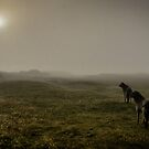 huters in the mist by joak