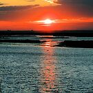 Sunset On The Reserve by Sharon Woerner