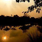 Floating Sun by redscorpion