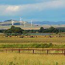Turbines by Groenendevil
