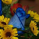 multi flowers by Cheryl Dunning