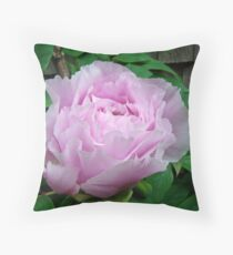 Pink Tree Peony Blossom Throw Pillow