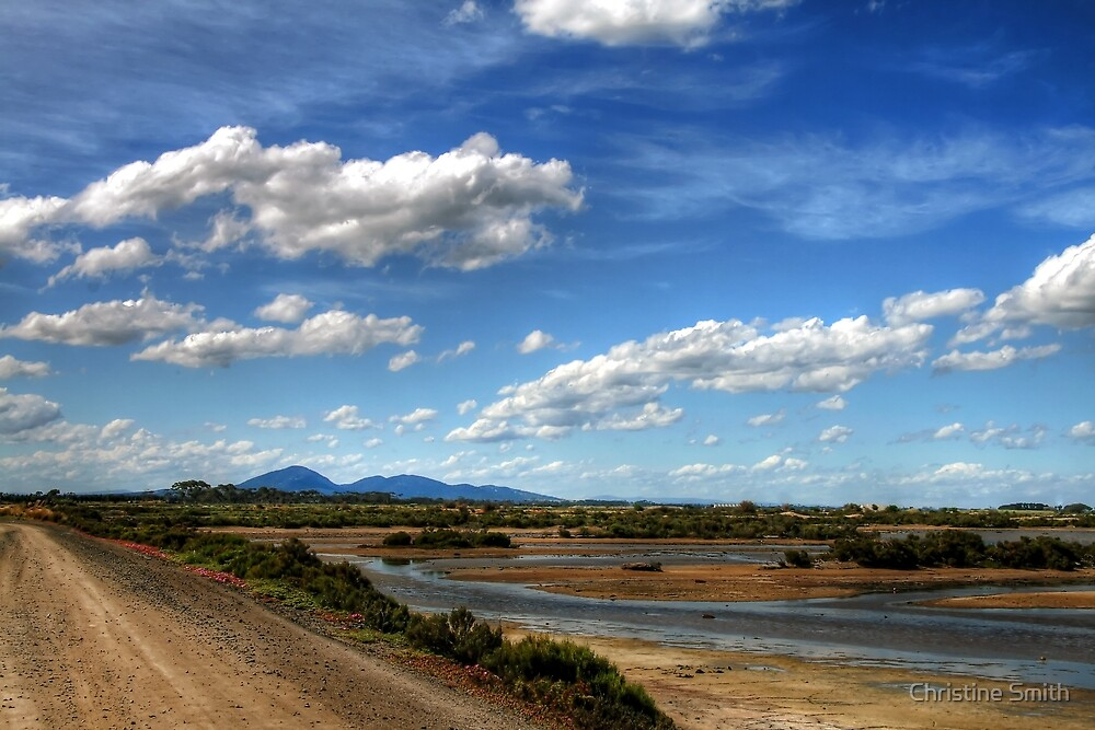 The Tidal Sand Flats at Avalon Beach by Christine Smith