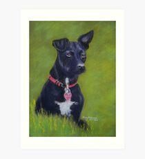 Tarn, the Patterdale Terrier Art Print