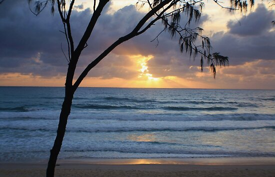 sunday morning ... by gail woodbury