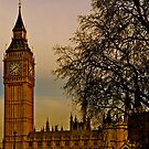 Parliament Square London by andonsea